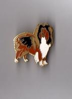 Pin's Chien Colley (EGF) Hauteur: 3,2 Cm - Animals