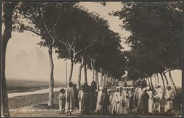 The Return From The Pyramids, Cairo, C.1910 - RP Postcard - Cairo
