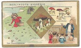 Chromo Berlingots Eysséric Carpentras - Les Champignons - Autres