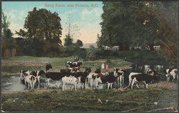 Dairy Farm, Near Victoria, British Columbia, C.1910 - Valentine's Postcard - Victoria