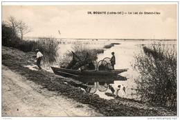 44. Bouaye. Le Lac De Grand Lieu - Bouaye