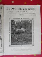 Le Monde Colonial Illustré N° 7 De 1924. Tchad Brazzaville Réunion Saint-pierre Miquelon Madagascar Binao Saigon Cholon - Zeitungen