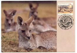 Australia 1993 FDC Pre-Paid Postcard Scott 1284 Kangaroo - FDC