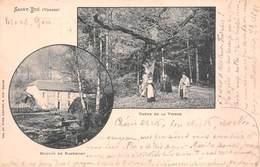88 - St-Dié - Moulin De Nayemont - Belle Animation Au Pied Du Chêne De La Vierge - 2 Beaux Plans - Saint Die