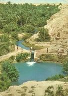 GABES TUNEZ 1975 - Túnez