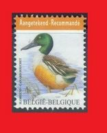 Belgium Belgique 2015, Buzin, Canard Souchet / Shoveler, Spoonbill Duck  MNH ** Recommandé / For Registered Mail - Patos