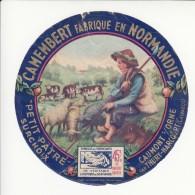 Etiquette De Fromage Camembert - Petit Pâtre - Caumont Sur Orne - Calvados. - Cheese