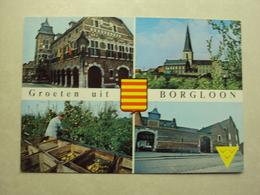 29207 - BORGLOON - STADHUIS - 4 ZICHTEN - ZIE 2 FOTO'S - Borgloon