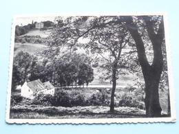 La Parnasse Et St. Jean Vus Du Chant Des Oiseaux ( Huaux ) Anno 1957 ( Voir Photo ) ! - Thuin