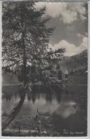 Lac Retard - Photo: O. Sartori - VD Vaud