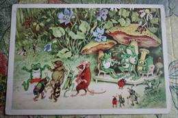 Frog Orchestra - 1950s Mushroom Champignon - Hongos