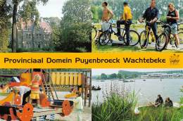CPM - WACHTEBEKE - Provinciaal Domein Puyenbroeck - Wachtebeke