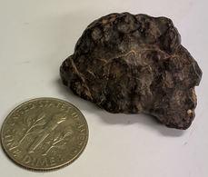 15 Gram NWA METEORITE From The Sahara Desert (#K889) - Météorites