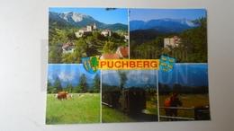 D159669 Austria Puchberg Am Schneeberg  Zahnradbahn - Train Railway - Hors Pferd Cheval - Eisenbahnen