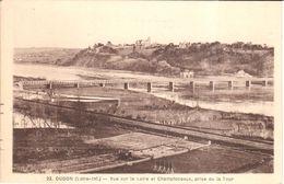(44) Loire Atlantique - CPA - Oudon - Vue Sur La Loire Et Champtoceaux - Oudon