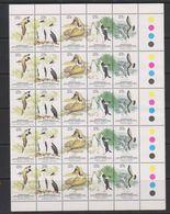 AAT 1983 Antarctic Wildlife Strip Of 5v (5x) ** Mnh (39490A) Horiz. Folded - Australisch Antarctisch Territorium (AAT)