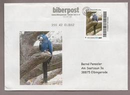 Biberpost - Papagei - Hyazinth-Ara (Anodorhynchus Hyacinthinus) Auf Brief Mit Bild - Papageien