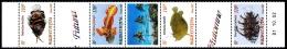 WALLIS ET FUTUNA 2002 - Yv. 583 à 586 Bande ** Bdf Daté  Cote= 12,40 EUR - Poissons Rares (4 Val.)  ..Réf.W&F22021 - Wallis And Futuna