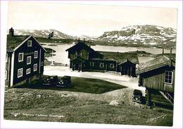 M6500 NORVEGIA NORVEY TELEMARK FJELLSTUEN HAUKELISAETER NON VIAGGIATA - Norvège