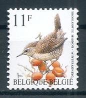 BELGIE * Buzin * Nr 2449 * Postfris Xx * HELDER WIT  PAPIER - 1985-.. Oiseaux (Buzin)