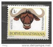 1977 1c African Buffalo, Mint Never Hinged - Bophuthatswana