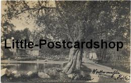 Foto AK Fellin Wassermühle Feldpost 1918 Stempel Wirtschaftsbeirat - Estonia