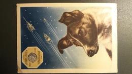Année Géophysique Internationale 1957-1958 Russe Envoi Dans L'espace De La Chienne - Space