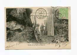 !!! CPA DE LA REUNION DE 1906 : ST ANDRE, ENTREE DE LA FORET DE BELOUVRE - Réunion