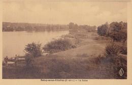 SOISY SOUS ETIOLLES - La Seine - Andere Gemeenten