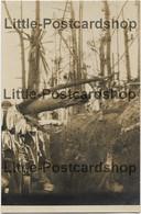 Foto Schützengraben Bei Skrobowa Nach Dem Trommelfeuer 1916 Russland Bei Baranowitschi Weissrussland Landwehr IR 72 - War 1914-18
