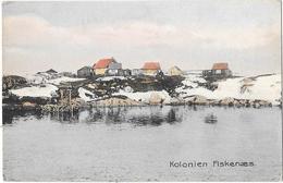 Groenland    - KOLONIEN FISKENAES -   Carte Couleur  - Non écrite - Groenland