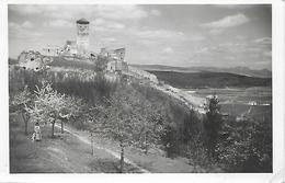 1939 - TRENCIN, Gute Zustand, 2 Scan - Slowakei
