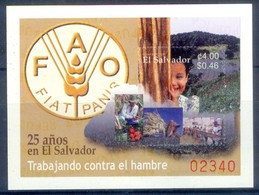 K10- El Salvador, 2003. FAO. - El Salvador
