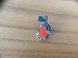 "Pin's ""DON DU SANG BRETAGNE"" (drapeau, Cornemuse) - Associations"