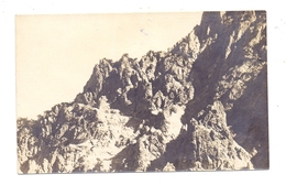 FL 9497 TRIESENBERG - GAFLEI, Fürstensteig, 1925 - Liechtenstein