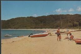 Modern Picture Postcard - New Zealand - Totaranui Beach, Abel Tasman National Park - Unused - MPC 577 - Postcards