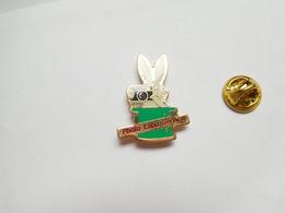 Beau Pin's , Photo , Photo Labo Service , Lapin , Rabbit - Photography