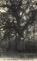B 6791 - Forêt De Senart  (77) Le Chêne Prieur - Other Municipalities