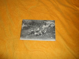 CARTE POSTALE ANCIENNE CIRCULEE DATE ?. / FRONTIERE FRANCO-SUISSE.- LES DOUANIERS EN EMBUSCADE.. - Dogana