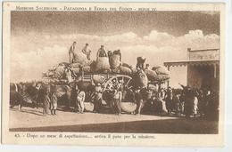 MISSIONI SALESIANE-PATAGONIA E TERRA DEL FUOCO -FP - Missioni