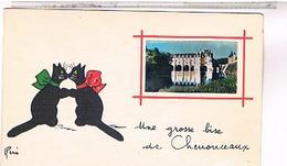 41 CHAT NOIR RENE 1953 CHENONCEAUX CPSM 9X14 - France
