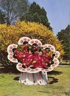 CP Corée Du Sud - Seoul, Kyongbok Palace - Fan Dance, Dance Avec éventail - Corée Du Sud