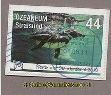 Nordkurier - Tiere - Ozeanum Stralsund - Pinguine - Pinguine