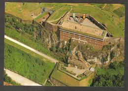 90 - BELFORT - Territoire De Belfort , Vue Générale Du Château , Le Lion - Belfort - Ville