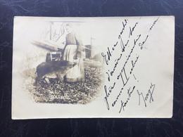 PAYSANNE ET SANGLIER (Oblitérée  HABAY- LA-NEUVE ) 1905 - Belgique