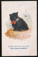 KAT - CAT - CATS - CHAT - Chats