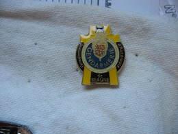 Pin's De La Gendarmerie De BEAUNE. Groupement D'Autoroute - Police