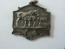Médaille Société Royale Agricole De L'est De La Belgique Liège 1844 - 1925 Bellière - Professionals / Firms
