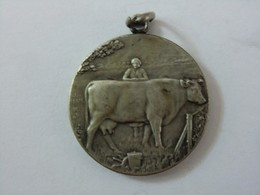 Médaille Belgique Comice Agricole De Verviers 1912 Belière - Professionals / Firms