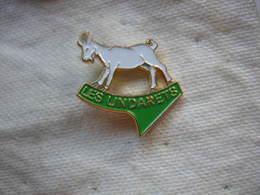 Pin's D'une Chevre, Des LINDARETS (village Des Chevres), Hameau Situé à 1467 M D'altitude Sur La Commune De Montriond - Animals